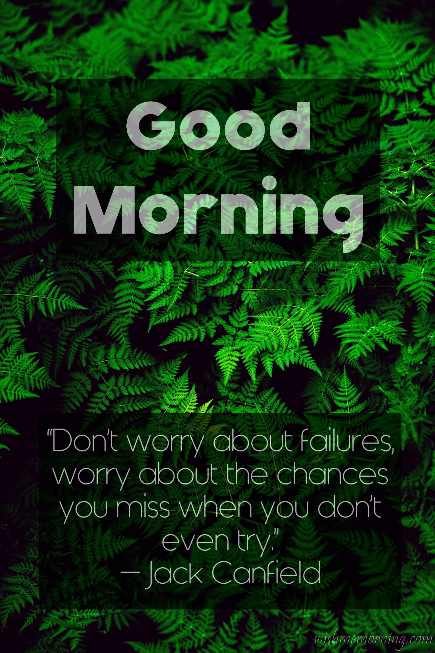 Good Morning Quote Jack Canfield Plants Background