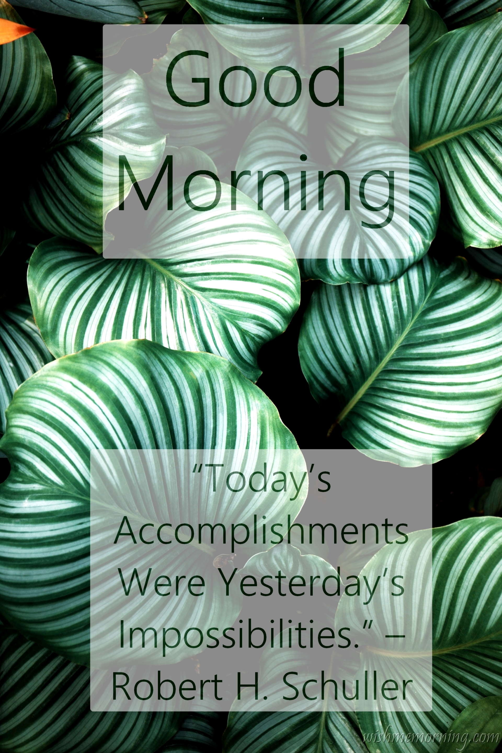 Good Morning Quote Robert H. Schuller Background