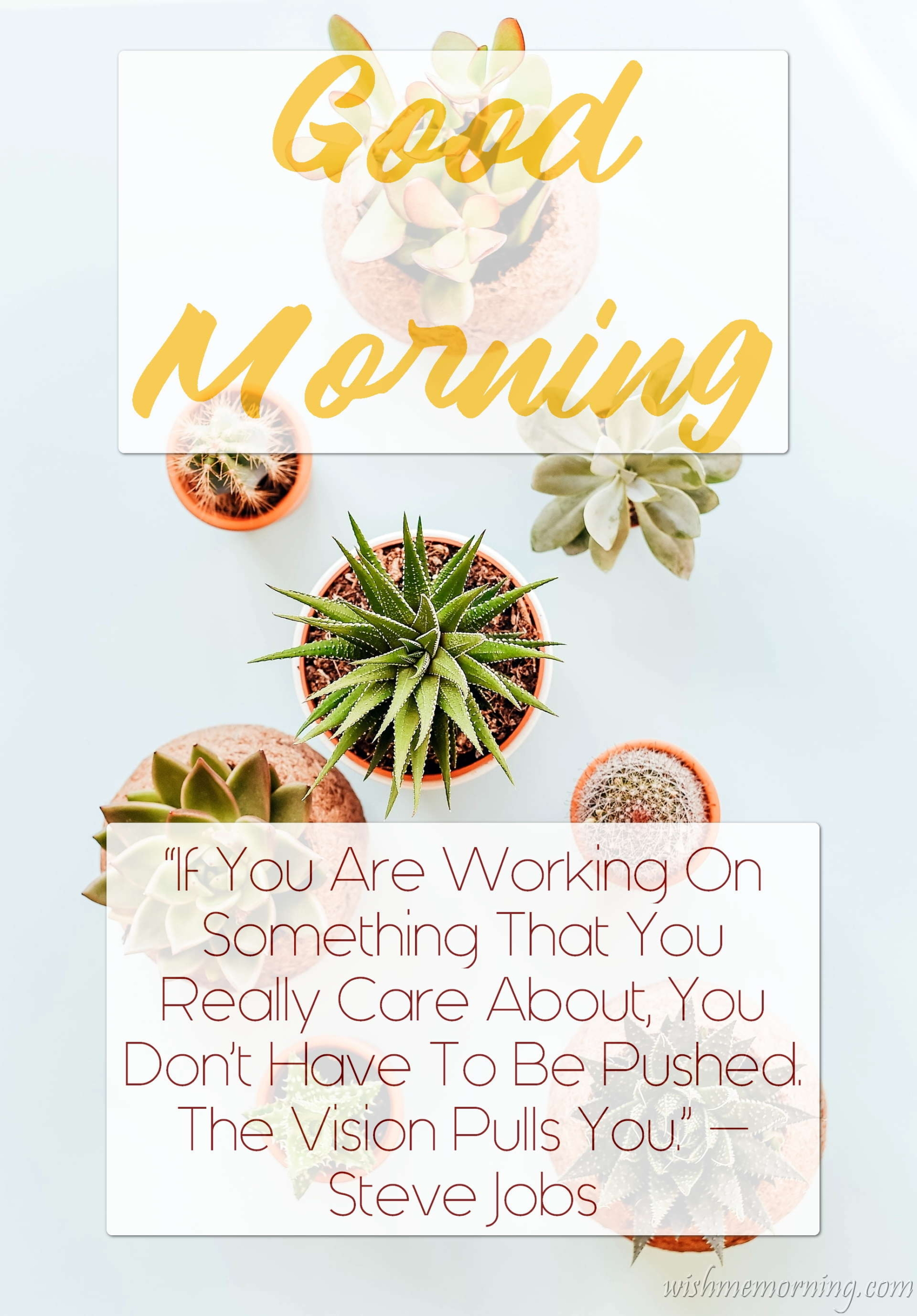 Good Morning Quote Steve Jobs Plants Background