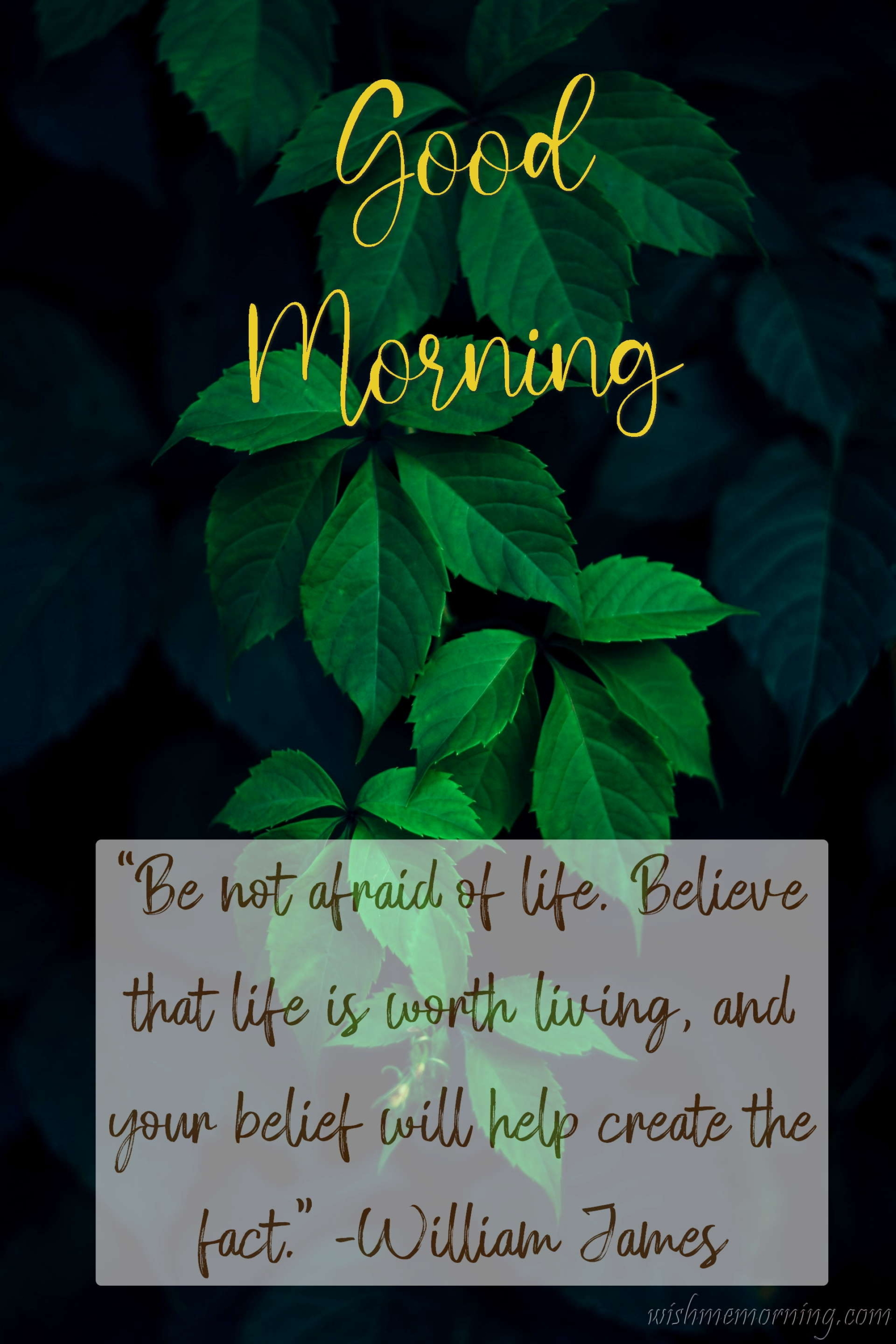 Good Morning Quote William James Background