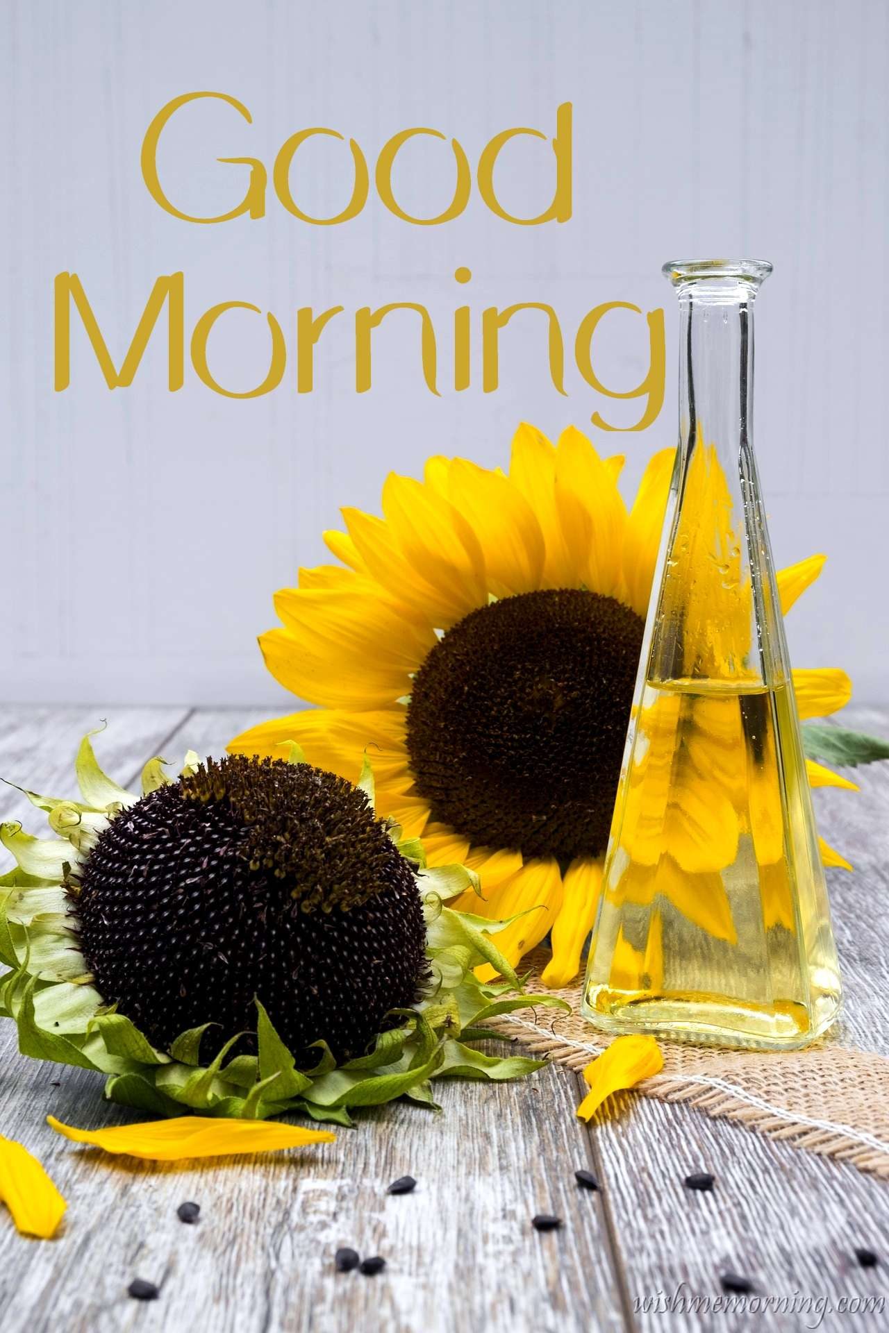 Two Big Yellow Sunflowers On Table Good Morning Image