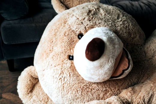 Cute Teddy Bear Portrait Good Morning Wishes Featured Image
