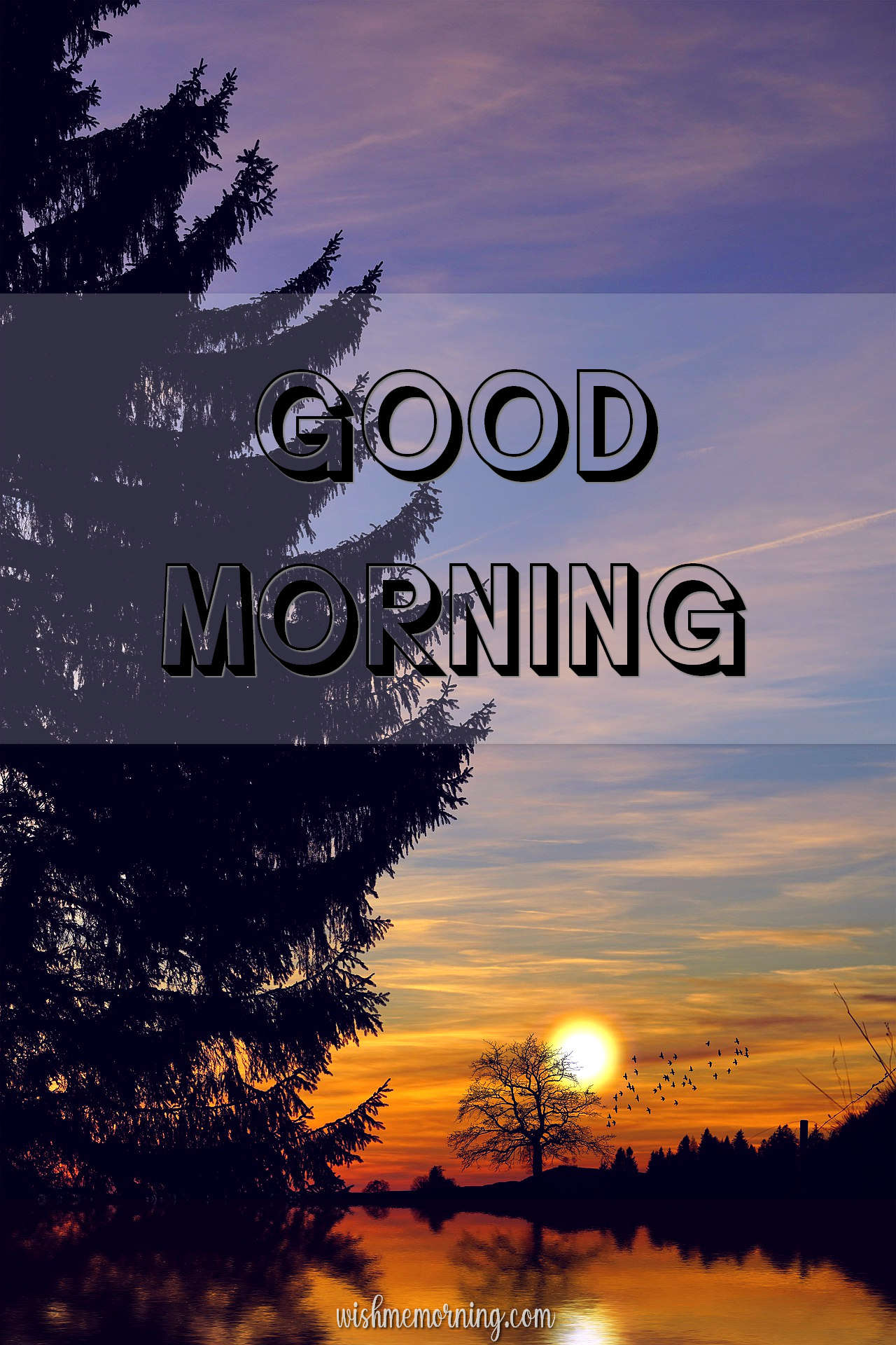 Beautiful Trees Woods Nature Images Wishes wishmemorning.com 13