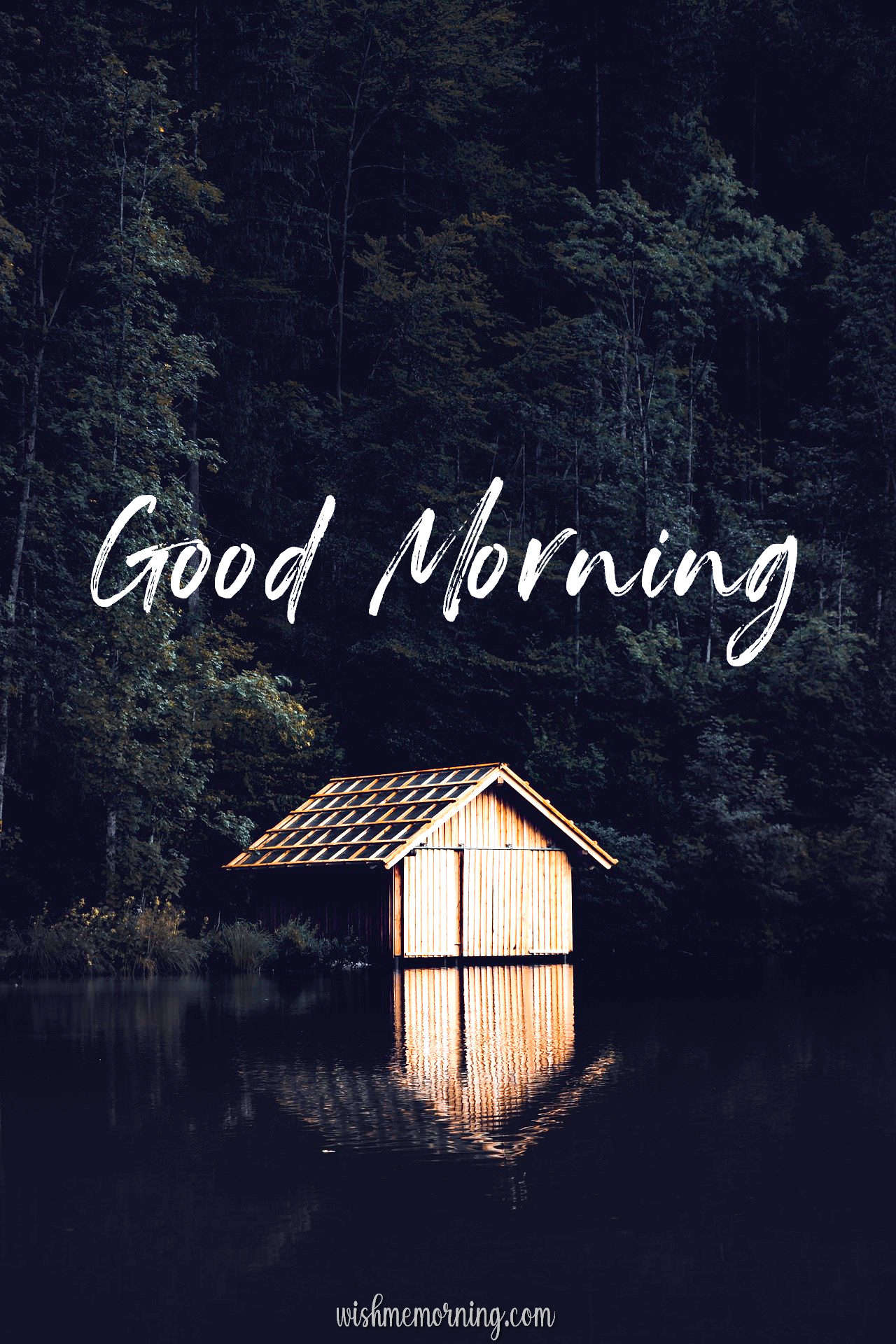 Beautiful Trees Woods Nature Images Wishes wishmemorning.com 2
