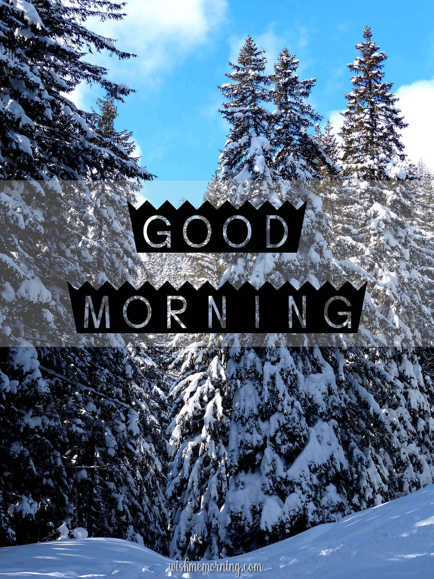 Beautiful Trees Woods Nature Images Wishes wishmemorning.com 3