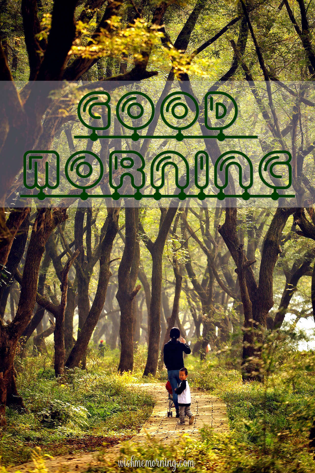 Beautiful Trees Woods Nature Images Wishes wishmemorning.com 7
